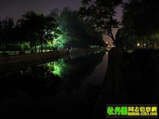 牡丹园夜景