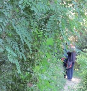 10月5日再遇警察搜查牡丹园