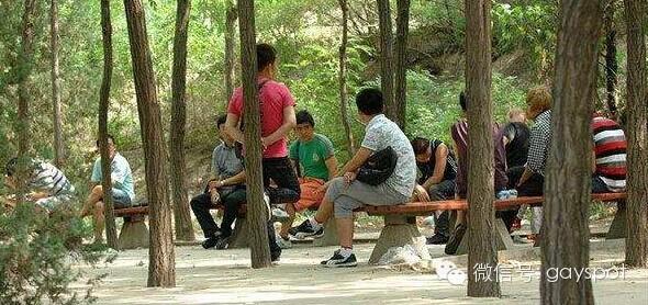 北京最大的同志据点昨晚遭警方清查-男孩久久网