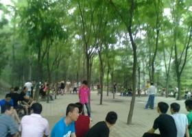 震撼北京城的同志据点牡丹园